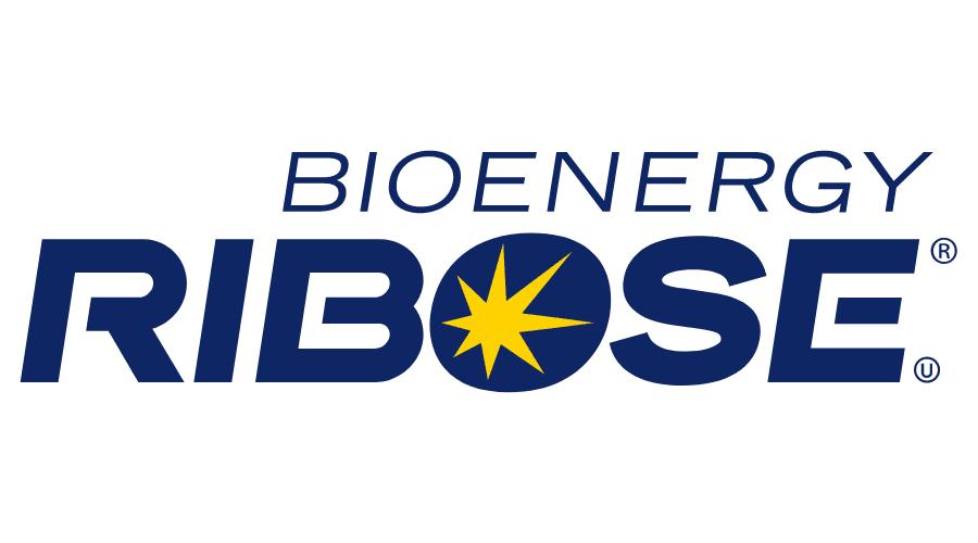 Bioenergy Ribose Logo Vector