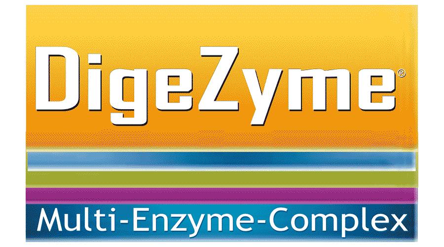 DigeZyme – Multi-Enzyme Complex Logo Vector