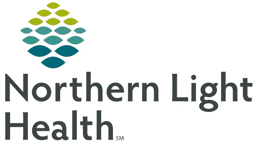 Northern Light Health Logo Vector