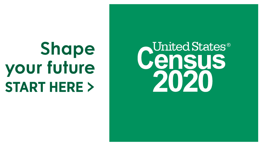 United States 2020 Census Logo Vector
